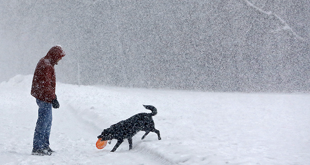 John Fritz plays fetch in the snow with his dog, Lexi, on Feb. 2, 2016, at Quarry Hill Park in Rochester, Minnesota. (AP photo: Rochester Post-Bulletin)
