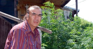 In this 2007 photo, Alex White Plume sits on the back steps of his house near Manderson, South Dakota, near some hemp plants that grew from seeds knocked off plants confiscated by federal drug agents. AP file photo