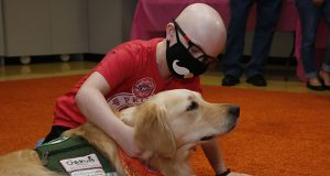 Children's Hospital patient Draegan Crabb, age nine, of Dale, Okla., pets a therapy dog following an announcement that The Children's Hospital at OU Medicine will be getting another therapy dog to add to their team of three dogs during a news conference July 22, 2019, in Oklahoma City. (AP Photo/Sue Ogrocki)